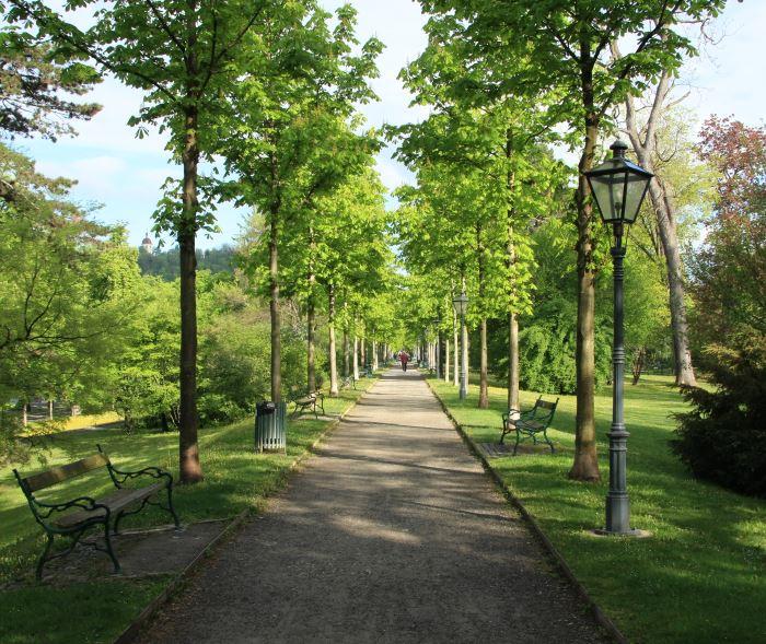 Grazissa on paljon puistoja, kuten aivan keskustassa sijaitseva Stadtpark. Tämä kuva on työmatkani varrelta.